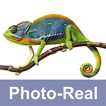 Photo-Real Colours